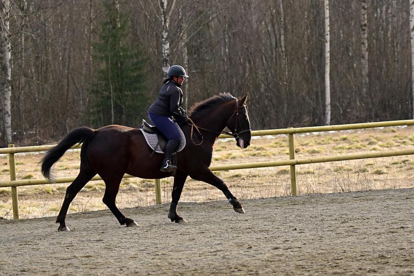 143 Hästkraft